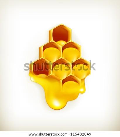 Honeycomb, vector - stock vector