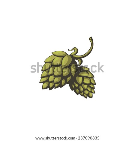 Hops vector visual graphic icon or logo, ideal for beer, stout, ale, lager, bitter labels & packaging etc. Hop is a herb plant which is used in the brewery of beer. Pixel perfect illustration. - stock vector