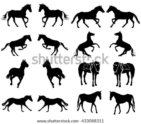 Horse collection - vector silhouette isolated on white background. Horse at jumping.