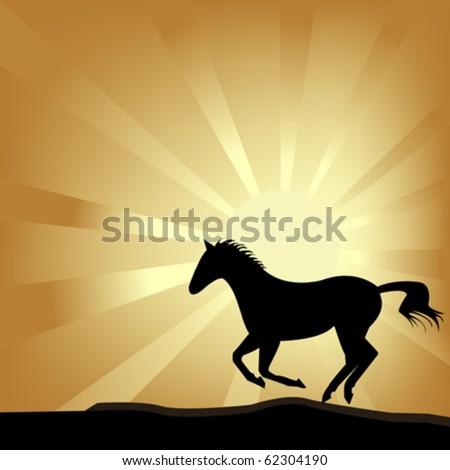 Horse galloping - stock vector