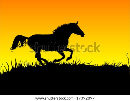 horse galloping on sunset - stock vector