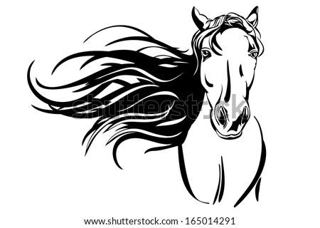 horse hand drawn vector llustration - stock vector