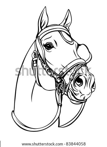 Horse head  (Vector illustration) on white background - stock vector