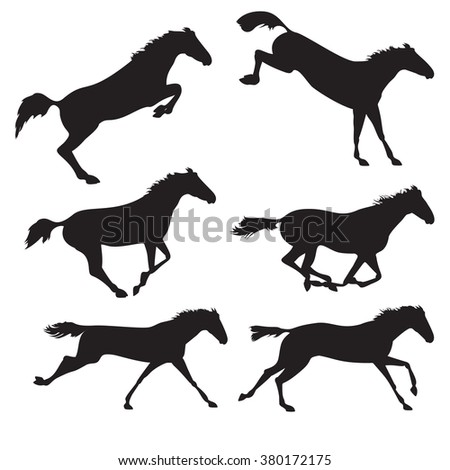 Horse realistic image. Silhouettes of horses. Black horses on isolated background. Set of wild horses. Vector horse collection - stock vector