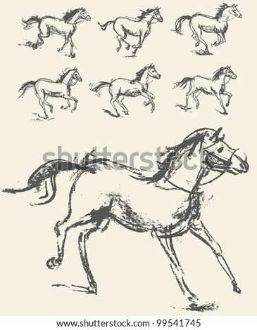 Horse. Set. Hand-drawn. Vector illustration. Phase of the movement - stock vector