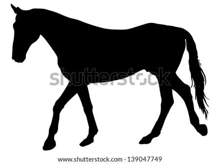 Horse silhouette, vector illustration - stock vector
