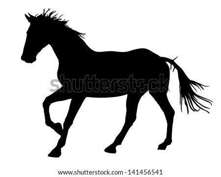 Horse silhouette, vector illustration , horse race, isolated on white background - stock vector