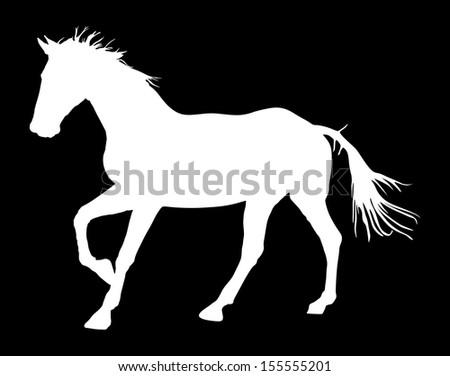 Horse silhouette, vector illustration , horse race, white horse isolated on black background .  - stock vector