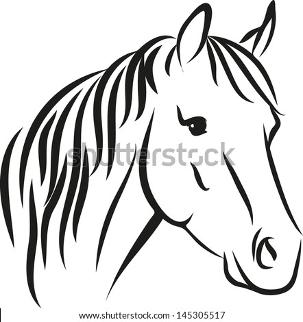 how to grow a long mane on a horse