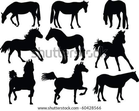 horses silhouette collection - vector - stock vector