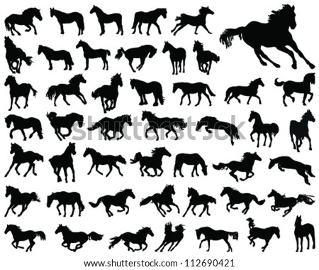 Horses silhouette 4-vector
