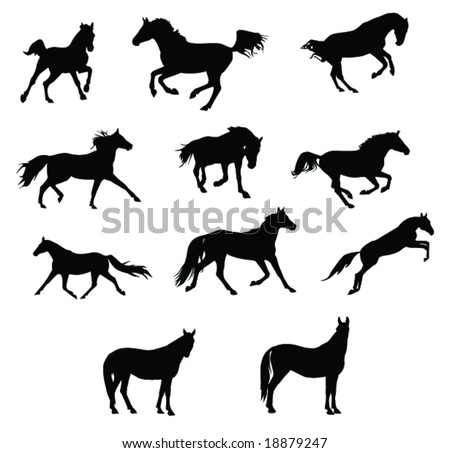 horses silhouettes 2 - stock vector