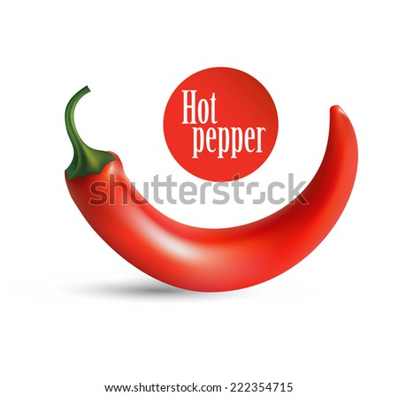 Hot red pepper. Photorealistic illustration of a chilli in scalable vector format - stock vector