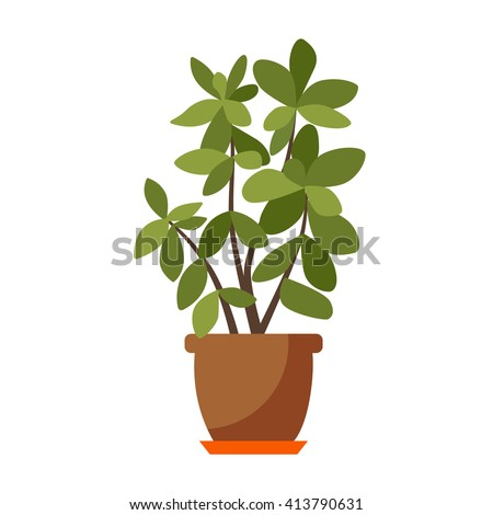 House plant isolated. Vector flat house plant pot illustration. Concept of flat home plant pot. Colorful house plant in pot for your design. Home plant icon - stock vector