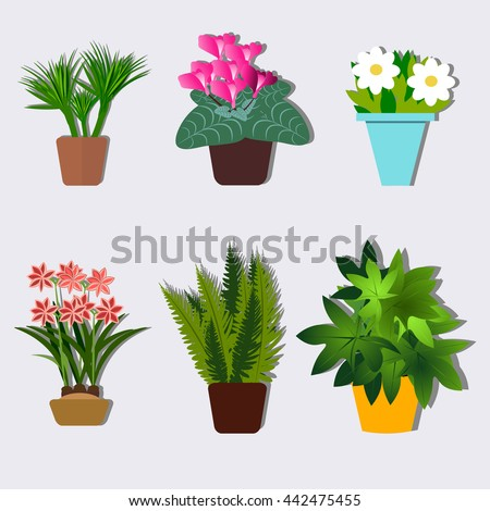 House plants and flowers in pots. Flat style vector illustration