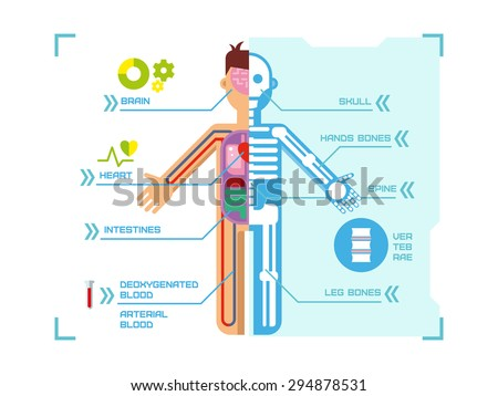 Human Body Anatomy Infographic Design on Blue Background concept flat vector illustration. - stock vector