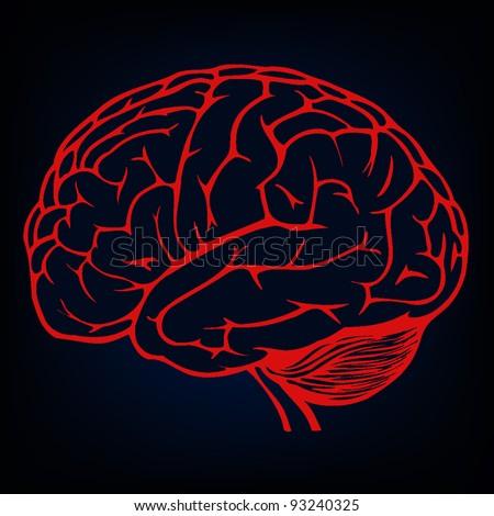 human brain background - stock vector