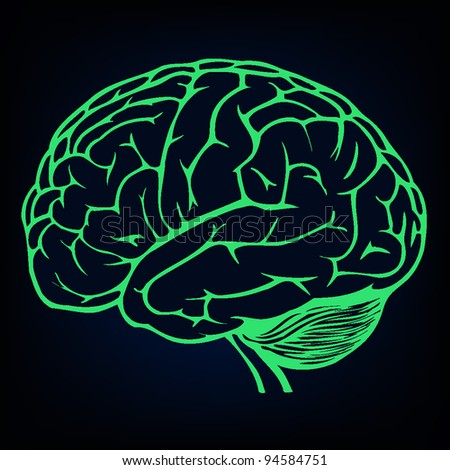 human brain background - stock vector