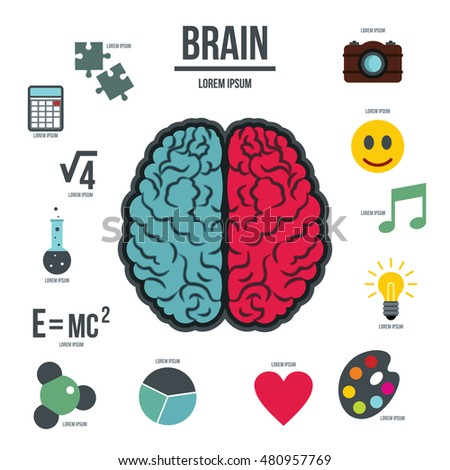 music and brain function Most recently neuroscientists have been excited about the significant differences they have seen between the brain functions of — anita collins featured this film bought together neuroscientific research into the benefits of music education on brain development in a way that allowed.