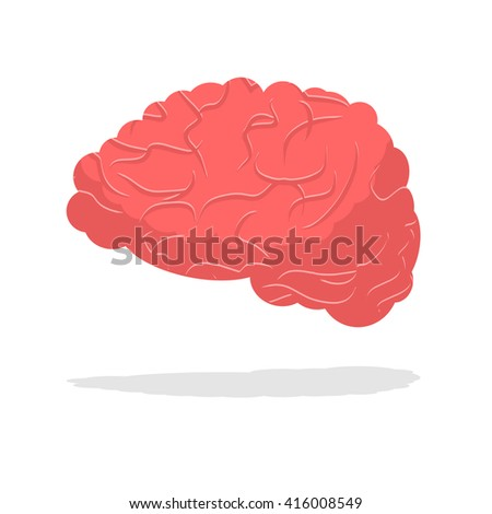 Human brain isolated. Brain on white background. part of body. Central body of human nervous system - stock vector