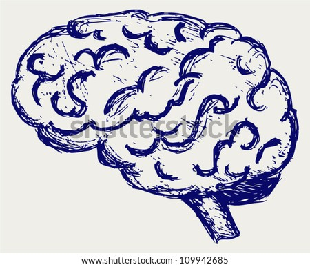Human brain. Sketch - stock vector