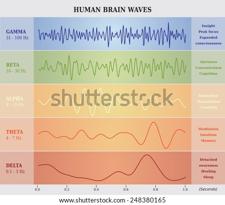Human Brain Waves Diagram / Chart / Illustration - stock vector