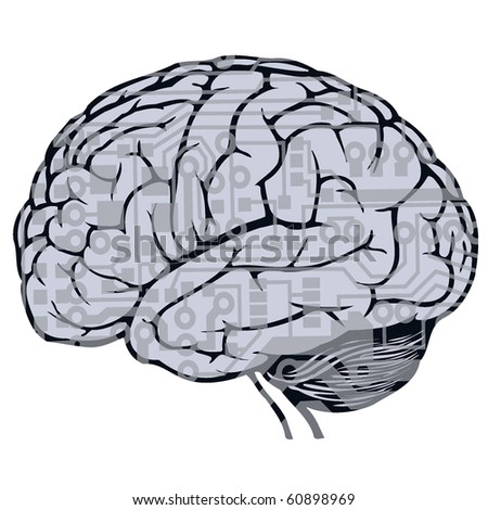 Oldtime Engraving Brain Stock Vector 11131276 - Shutterstock