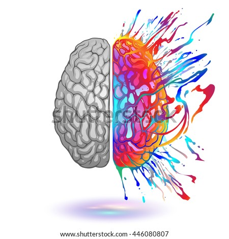 Human Brain With Creative Splash