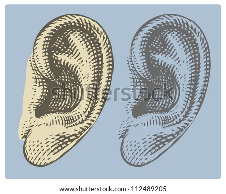 Human ear in engraved style - stock vector