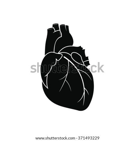 Human heart black simple icon isolated on white background - stock vector