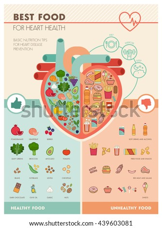 Human heart with healthy fresh vegetables on one side and junk unhealthy food on the other side, healthy food for heart infographic - stock vector