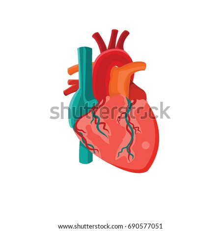 Human internal organ heart icon vector stock vector 690577051 human internal organ heart icon vector illustration ccuart Gallery