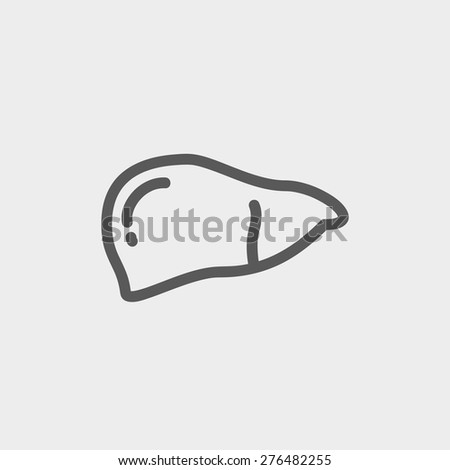 Human liver icon thin line for web and mobile, modern minimalistic flat design. Vector dark grey icon on light grey background. - stock vector