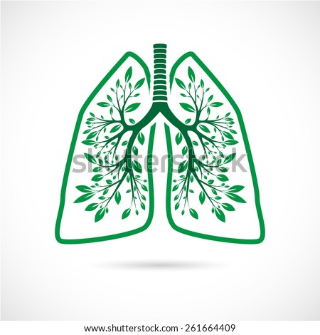 Human lungs in the form of green leaves on a white background. - stock vector
