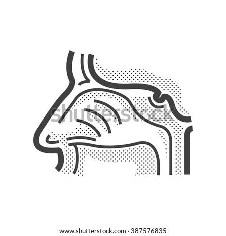 Human Nose, Medical Doctors Otolaryngology icon - stock vector