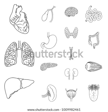 Parts and functions of the kidneys in addition Chapter 8 Air And Hydraulic Pumps Part 2 likewise Single Doorbell Wiring Diagram besides Schematic Symbols Worksheet moreover Plumbing Pipe Fitting Symbols. on schematic symbol cross