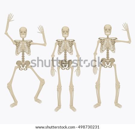skeleton arm stock images, royalty-free images & vectors, Skeleton