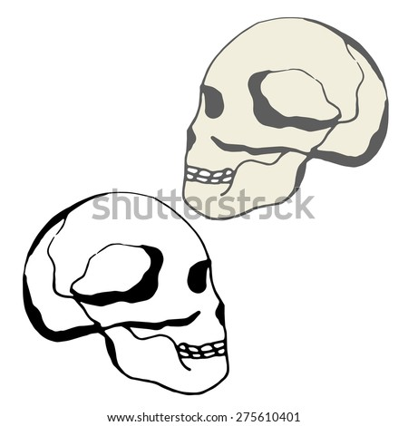 Human skull. Black and white image on white background. Silhouette. sketch - stock vector