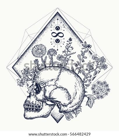 M Rank Human Skull Through Which
