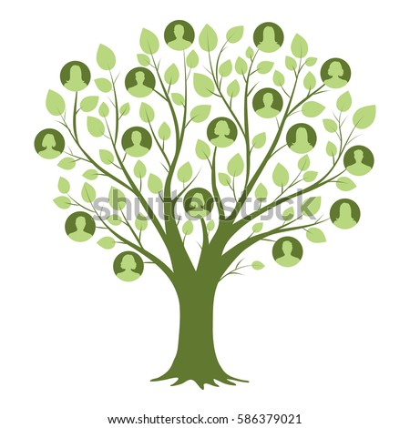 image of a family tree