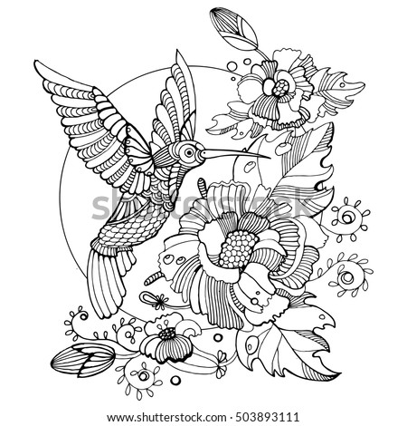 Colibri Vector Stock Images Royalty Free Images Amp Vectors