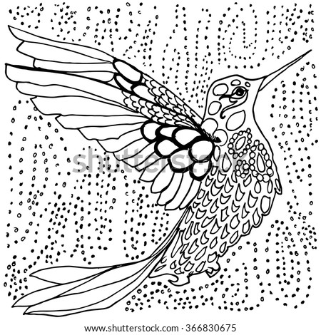 Conjunto de Adult coloring pages birds flowers mandala