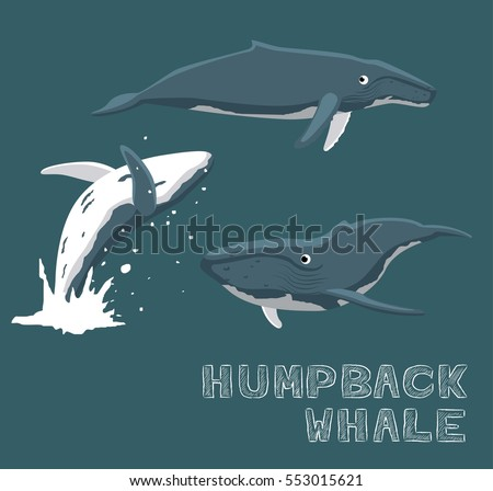 Humpback Whale Stock Images, Royalty-Free Images & Vectors ...