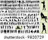 hundreds of people silhouettes - stock photo