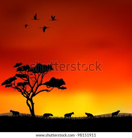 hyena - stock vector