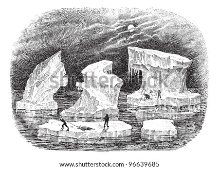 Icebergs, vintage engraved illustration. Dictionary of words and things - Larive and Fleury - 1895. - stock vector