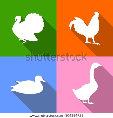 Icons dedicated to poultry - turkey, rooster, duck, goose. - stock vector