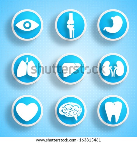 Icons with human organs. Medical concept. Vector Illustration, eps10, contains transparencies. - stock vector
