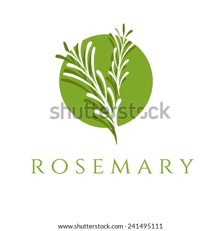 Illustration concept of emblem with rosemary. Vector - stock vector