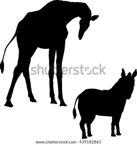 illustration depicting the silhouettes of a giraffe and zebra - stock vector